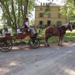 Le bonheur en blanc - La Magnanerie de Château Mentone - Calèche - Marie Claire Méditerranée