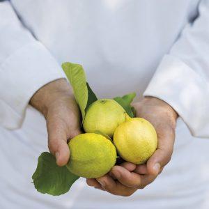 Aventure culinaire au pays du citron au Mirazur