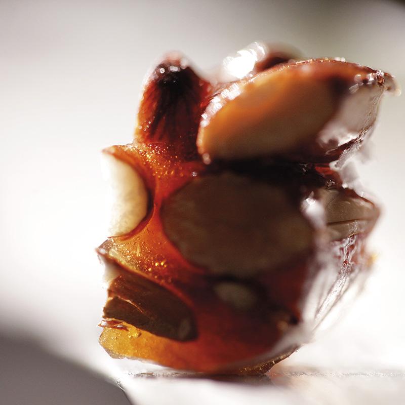 Nougats Sylvain-arts & gourmandises de provence