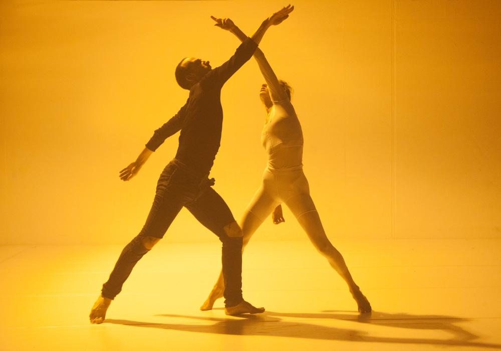 montpellier-danse-BALLET-DU-CAPITOLE-Roy-Assaf,-Yasmeen-Godder-Godder,-Hillel-Kogan-Theswanandthepimp_TamarLamm