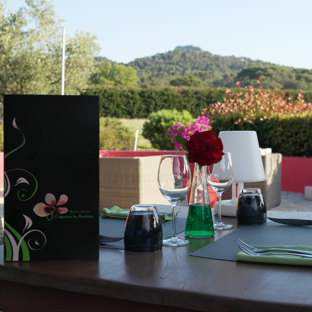 alpilles-o-caprives-de-mathias-saint-remy-de-provence-restaurant