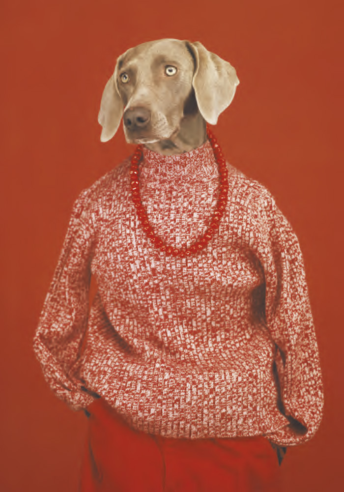 rencontres-photo-arles-2018-William-Wegman-Decontracte-2002