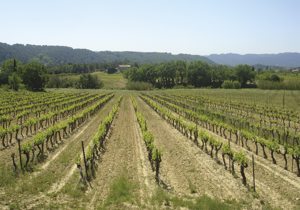vins-bio-luberon-chateau-fontvert