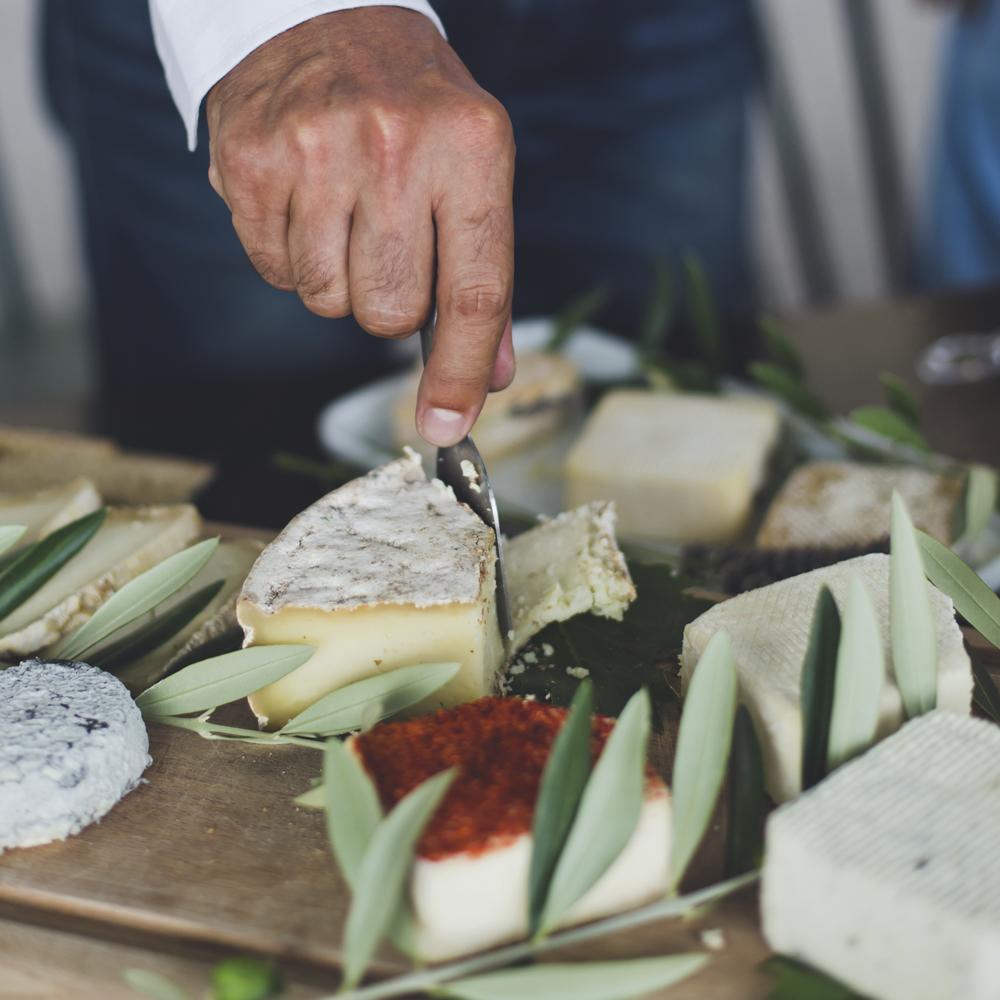 pays-de-fayence-villages-perches-degustation-fromages-fanny-ferme-des-cairns