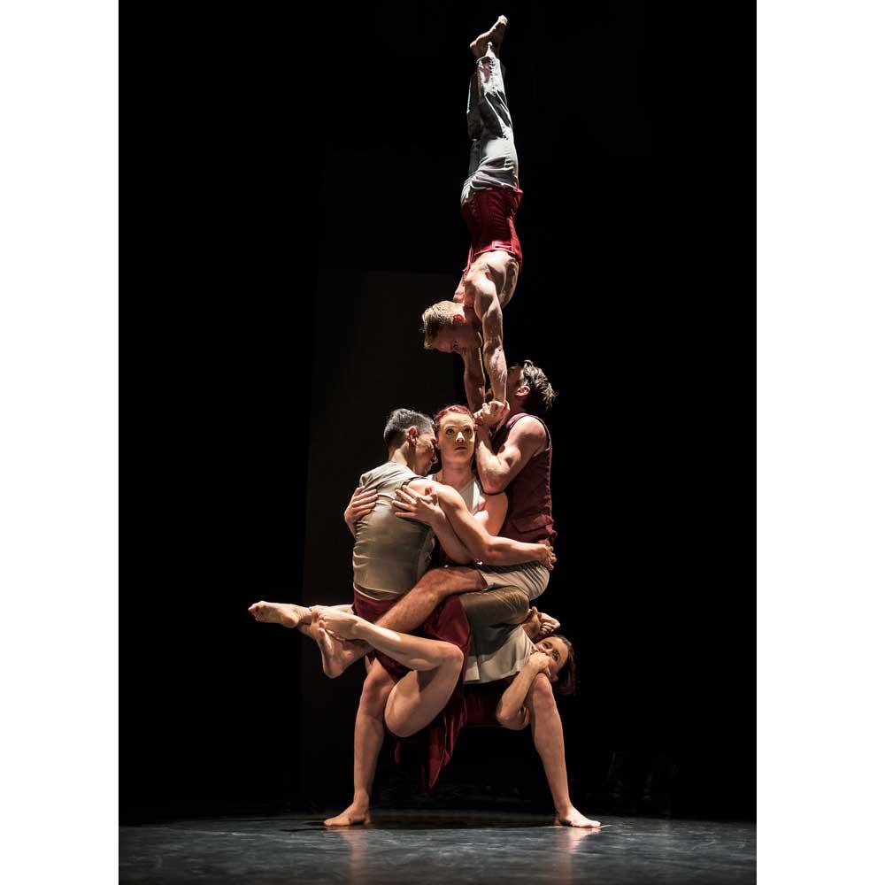 perles-culture-saison-cirque-mediterranee-toulon-Driftwood-Dylan-Evans