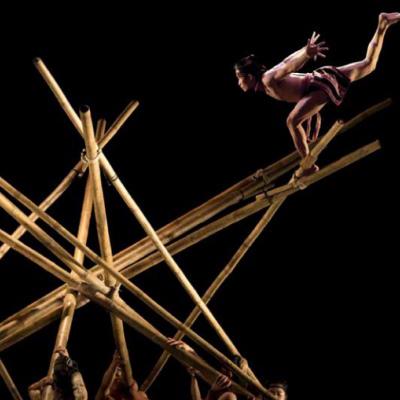 agenda-culture-fin-d'annee-nouveau-cirque-du-vietnam-cannes_teh_dar