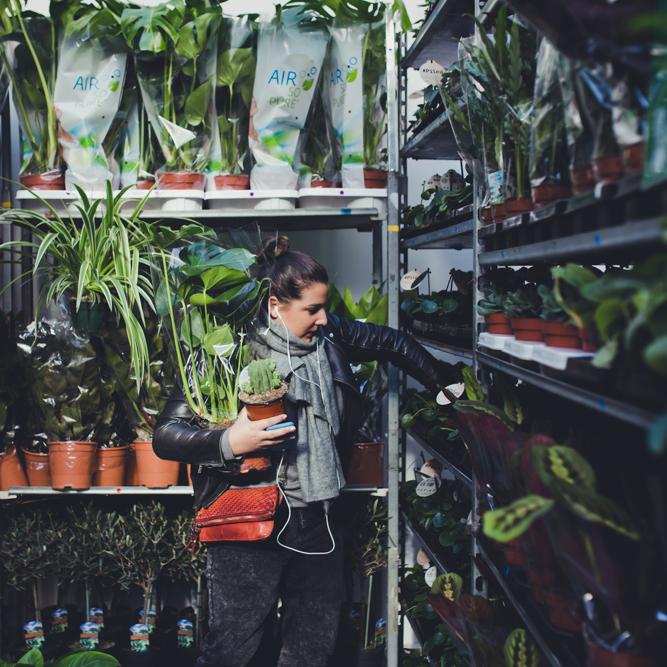 plantes-pour-tous-nice-janvier-2019-7