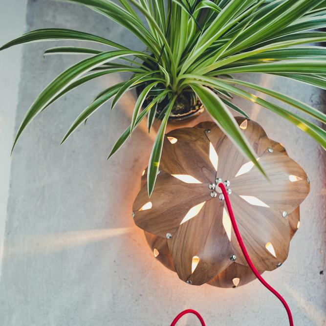 plantes-pour-tous-otra-design