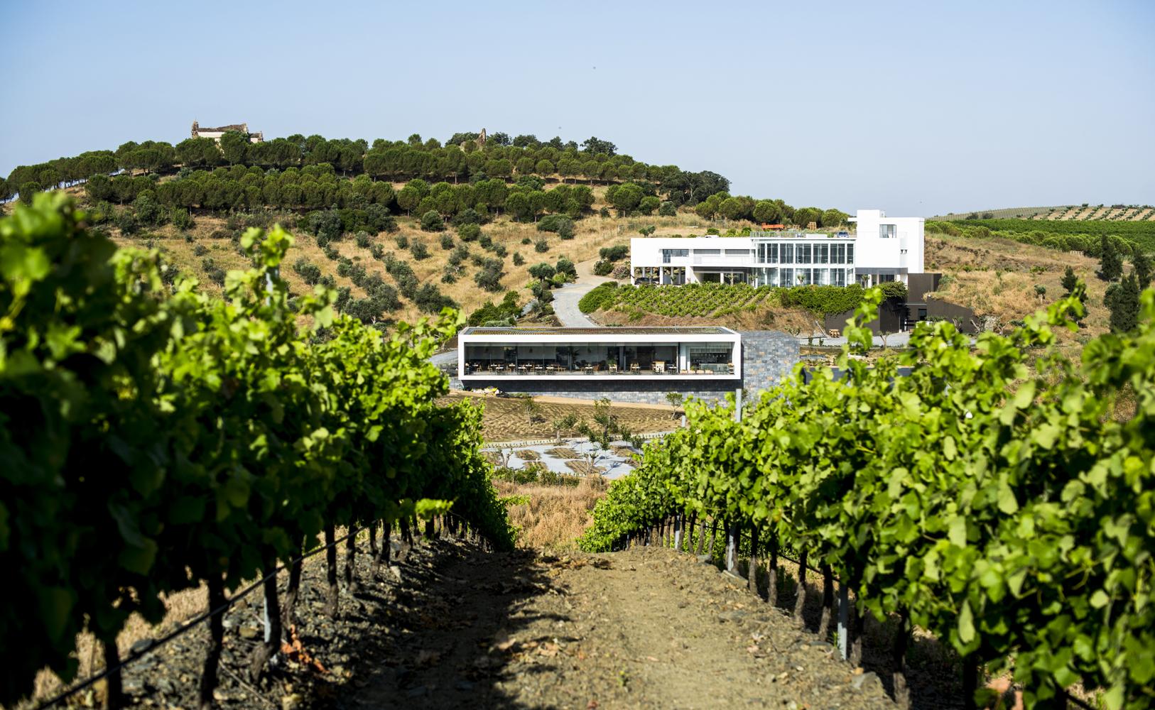 voyage-portugal-alentejo_GONCALO-VILLAVERDE_complexe-vinicole-de-Herdade-do-Esporao