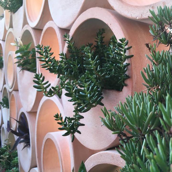 var-creatif-de-nature-le-photophore-modules-claustra-jardinieres