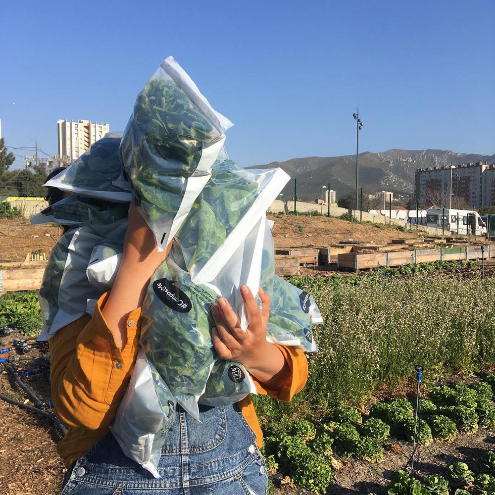 agriculture-urbaine-le-talus-marseille