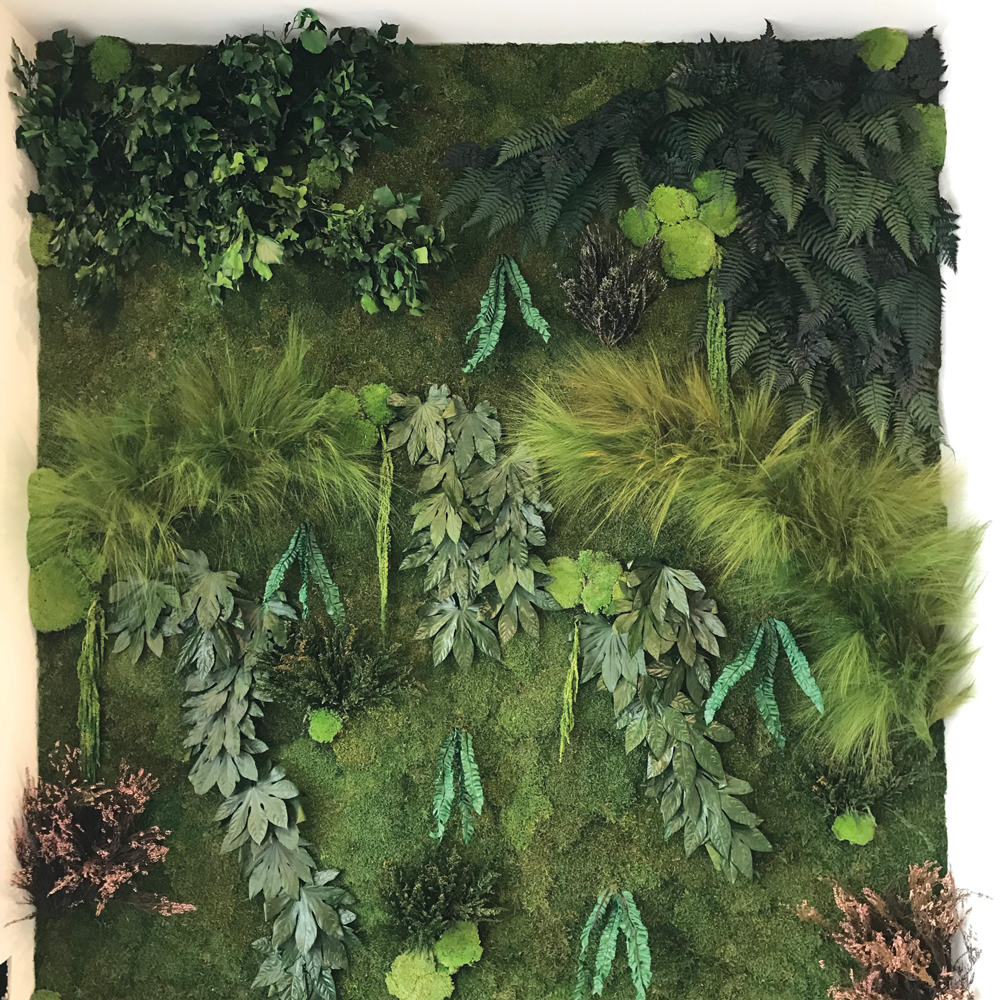 createurs corse-vert-jardin