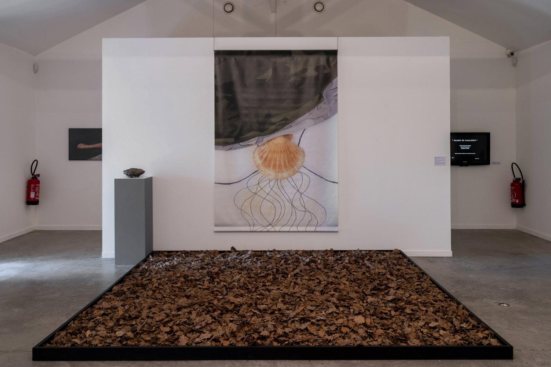 CAIRN-Centre-Art-Digne-Paul-Armand-Gette