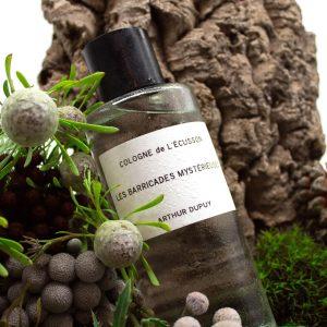 Fragrances-Sud-ARTHUR-DUPUY-LES-BARRICADES-MYSTÉRIEUSES-48€-250ml