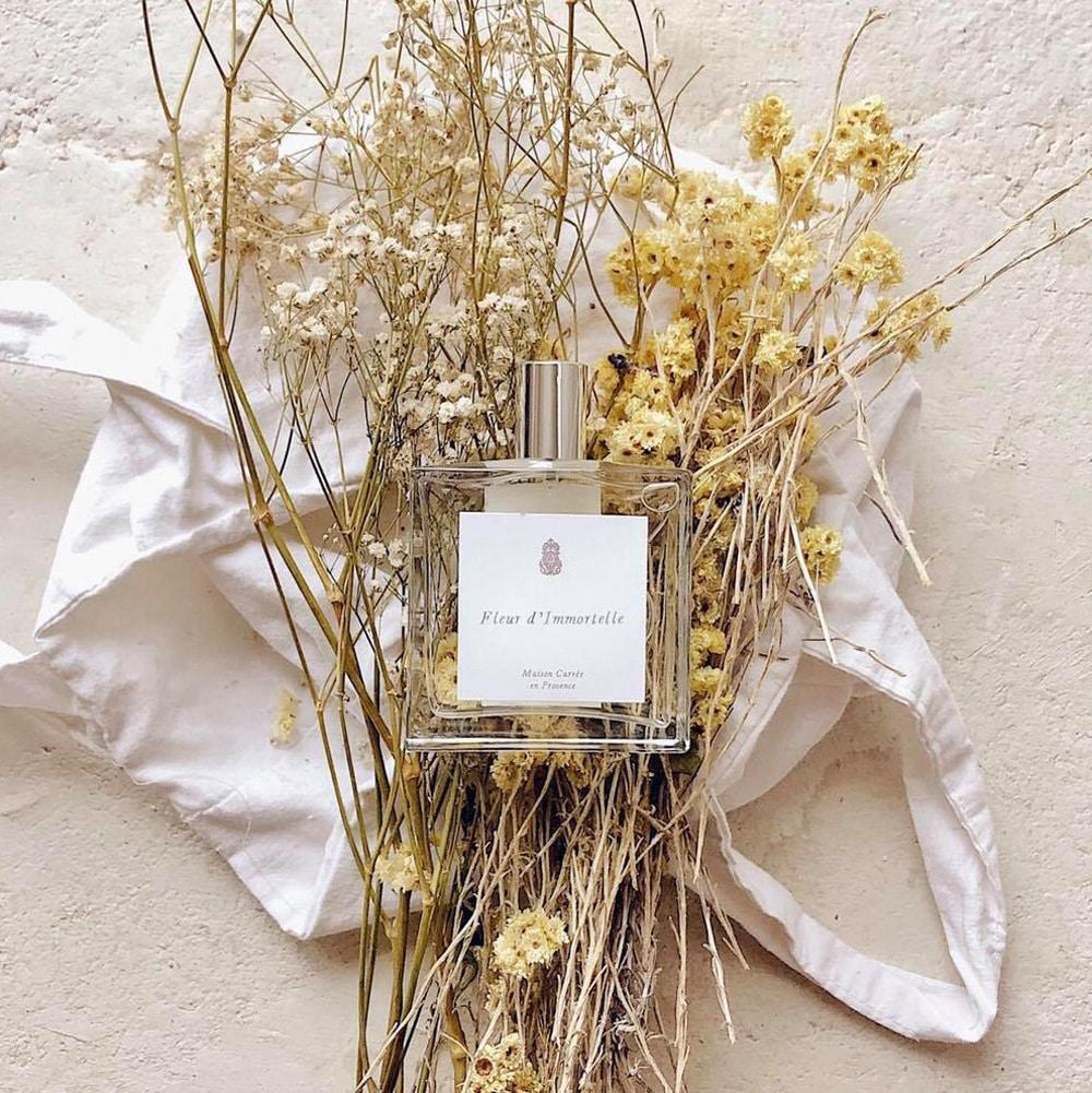Maison-Carree-en-Provence-brume-vegetale-Fleur-Immortelle