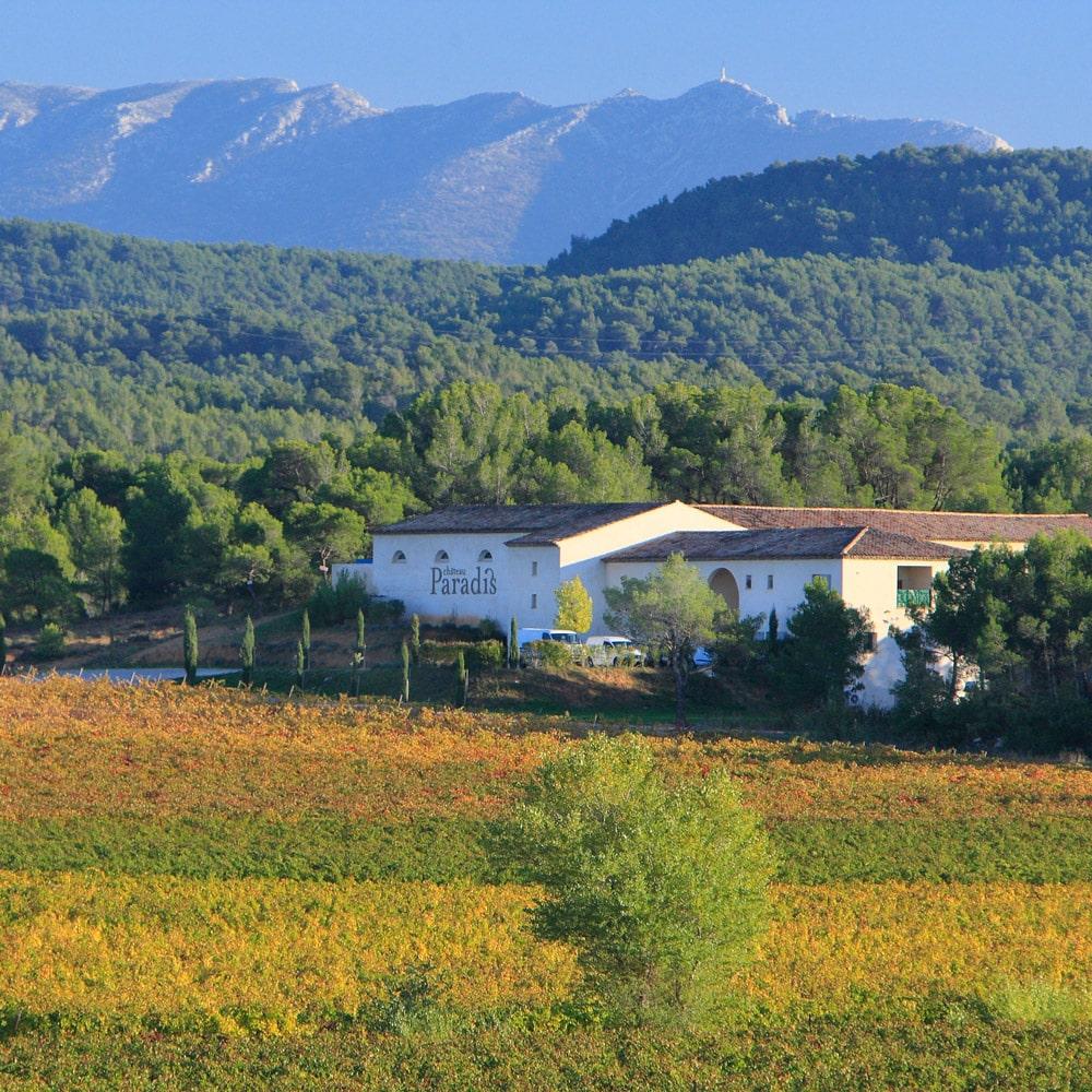 sudnly-Les-raisins-du-plaisir-Chateau-Paradis-11