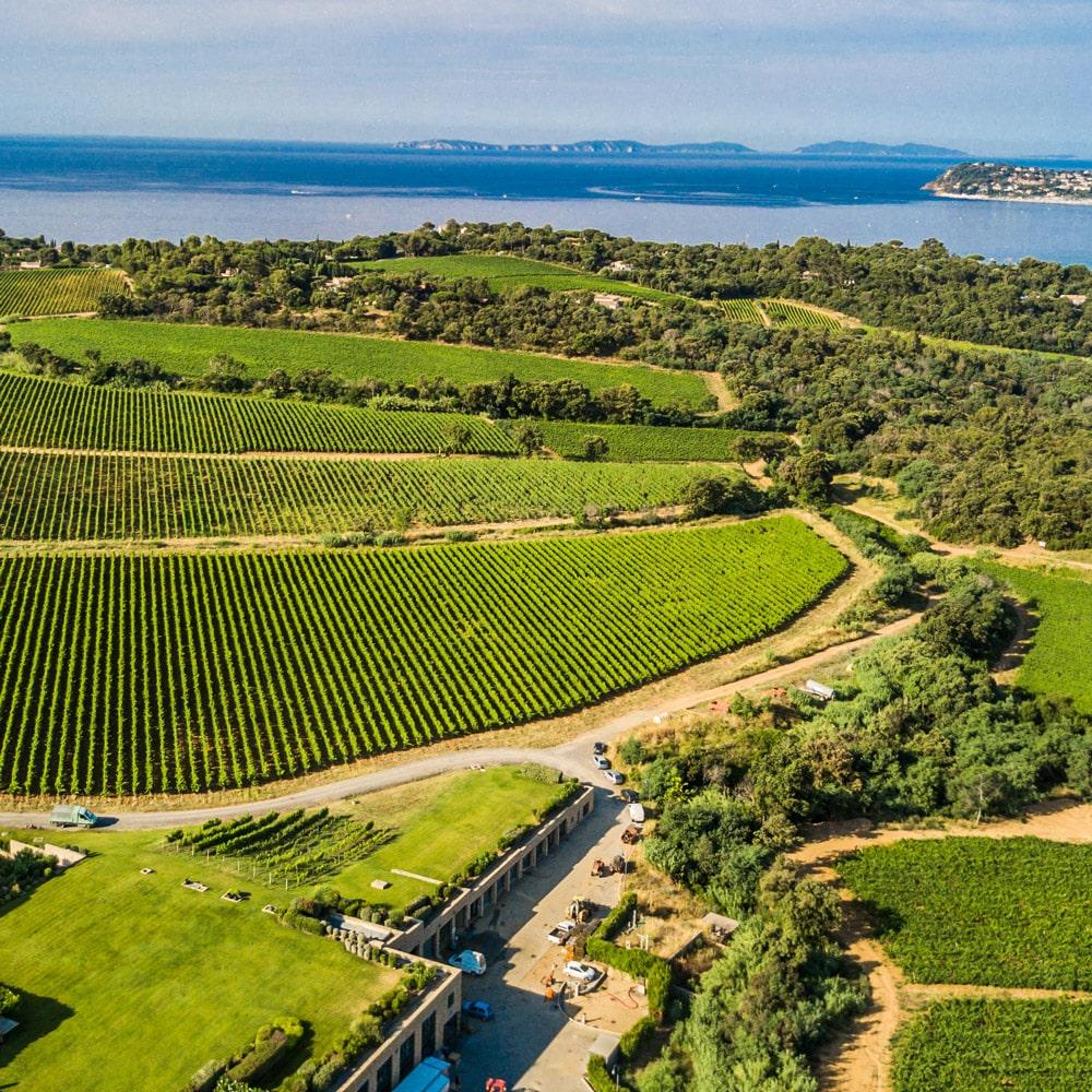 sudnly-Les-raisins-du-plaisir-Domaine-de-La-Croix-vignes