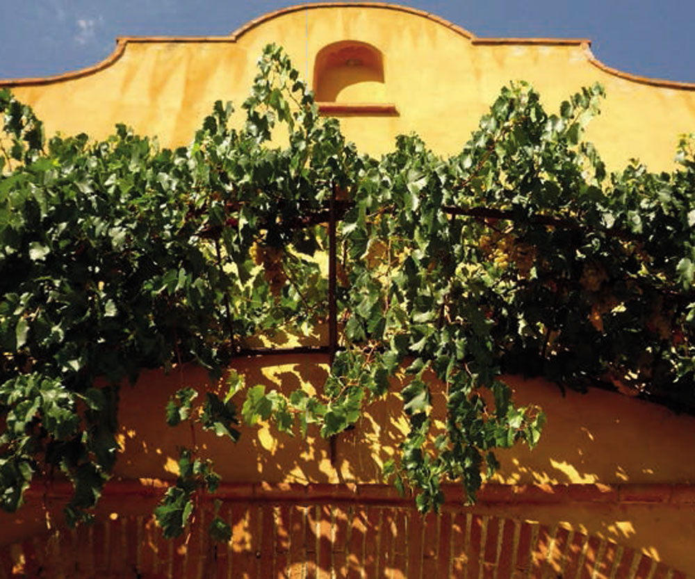 sudnly-Domaine-Forca-Real-facade-jaune-soleil