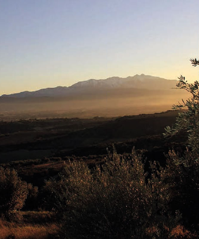 sudnly-Domaine-Forca-Real-vignes-montagnes